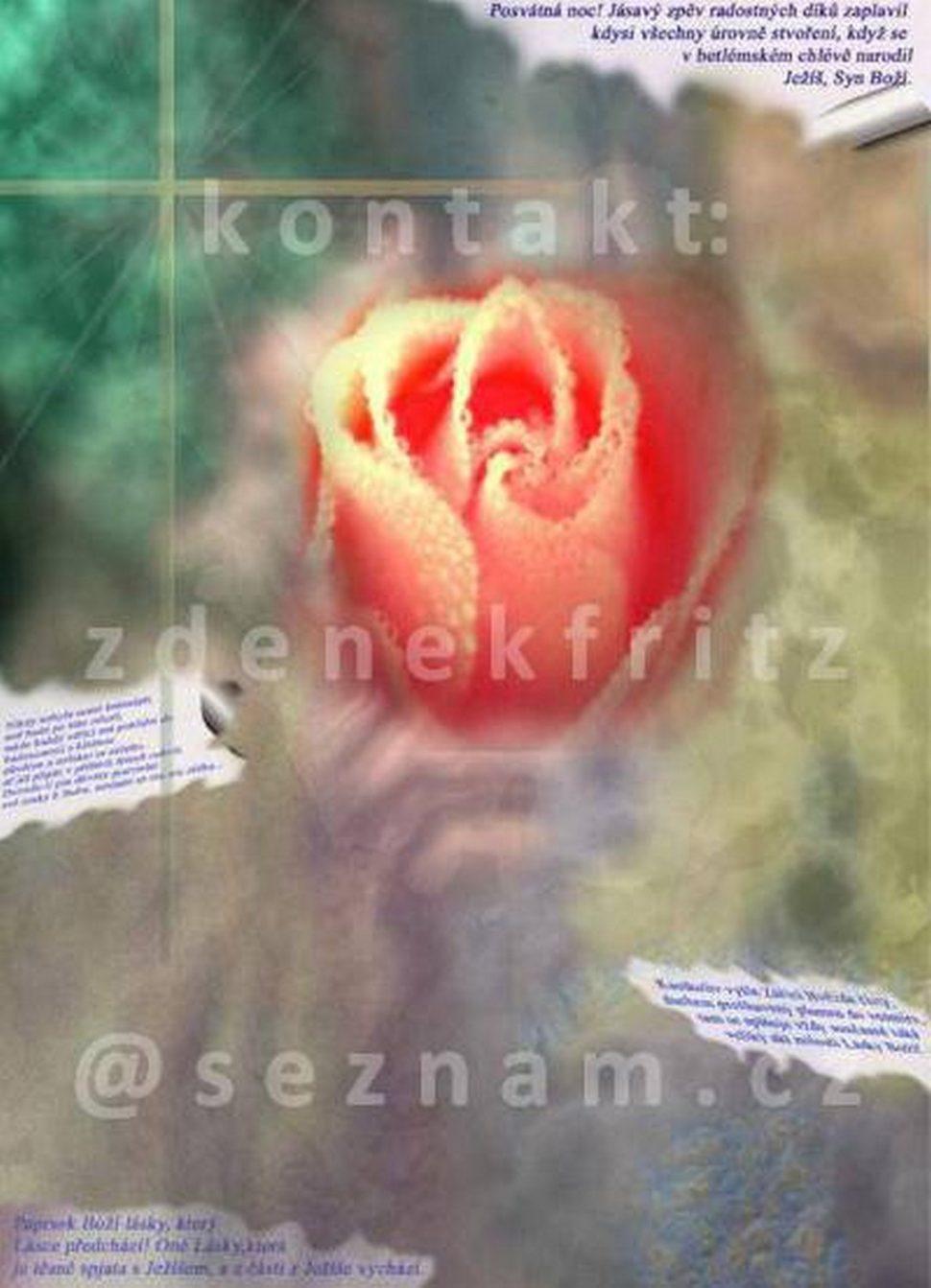Obrazek č.21